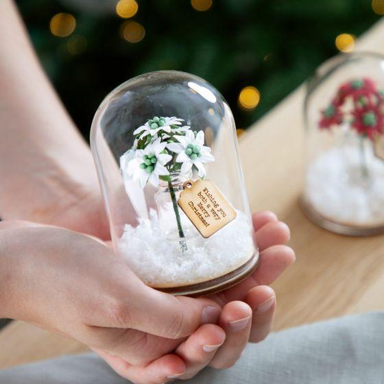 White Poinsettia Bunch in Dome